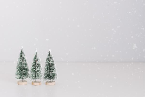 Notre équipe vous propose de découvrir ses suggestions cadeaux pour Noël 2020 ! Beauté, coiffure et soins !